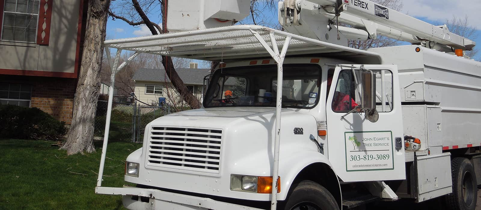 tree service and tree removal pros in Aurora CO