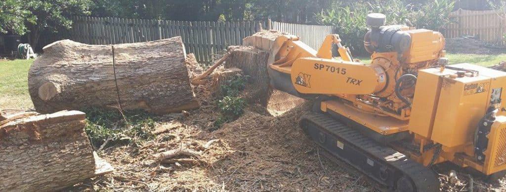 stump removal in progress