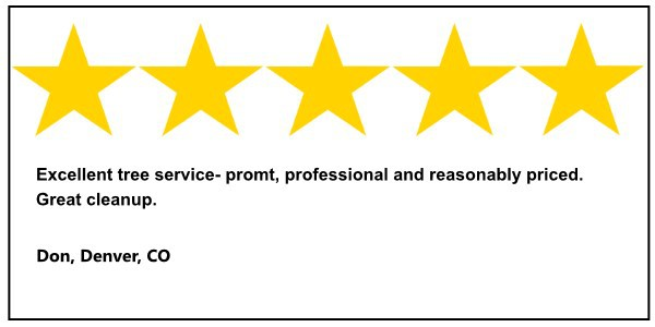 john egarts tree service 5 star review