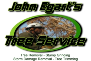 John Egarts stump removal | Colorado